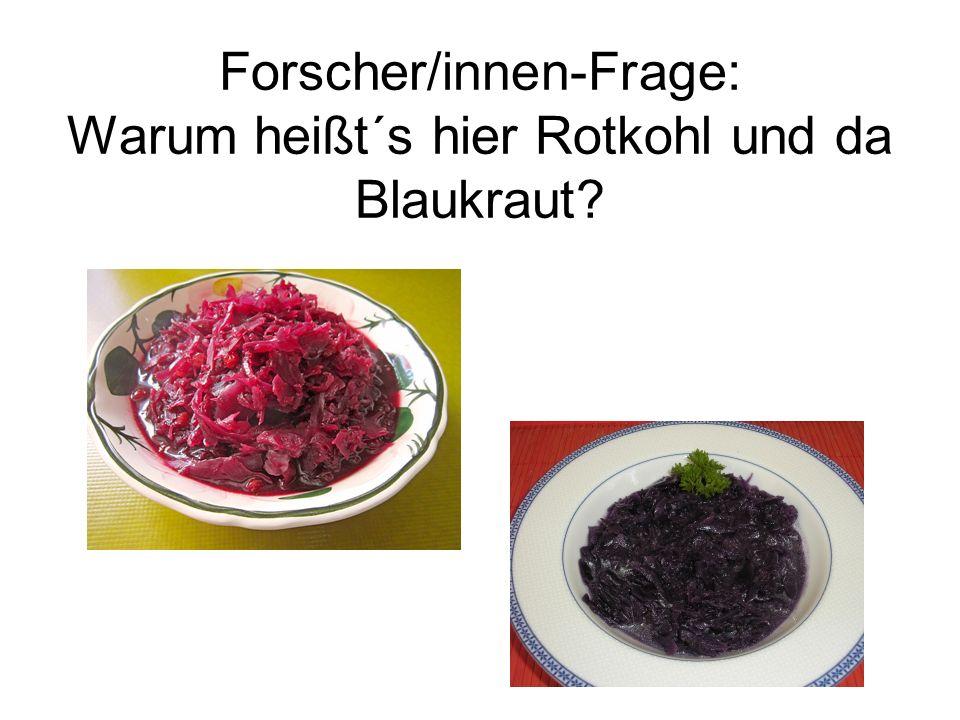 Forscher/innen-Frage: Warum heißt´s hier Rotkohl und da Blaukraut?