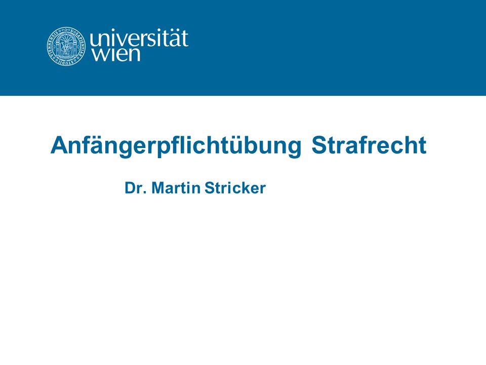 Anfängerpflichtübung Strafrecht Dr. Martin Stricker