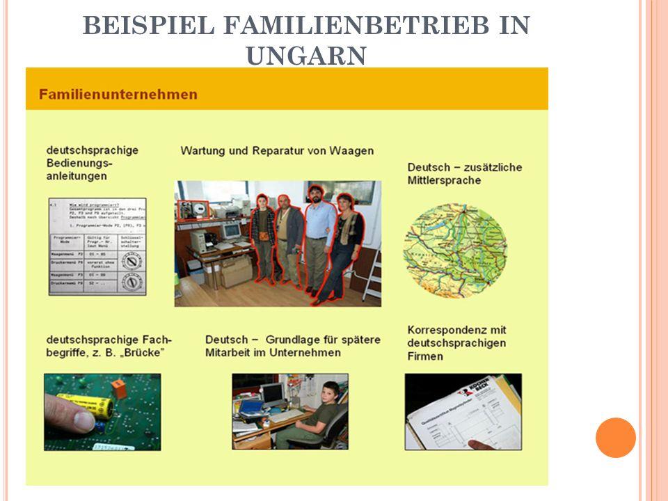 BEISPIEL FAMILIENBETRIEB IN UNGARN