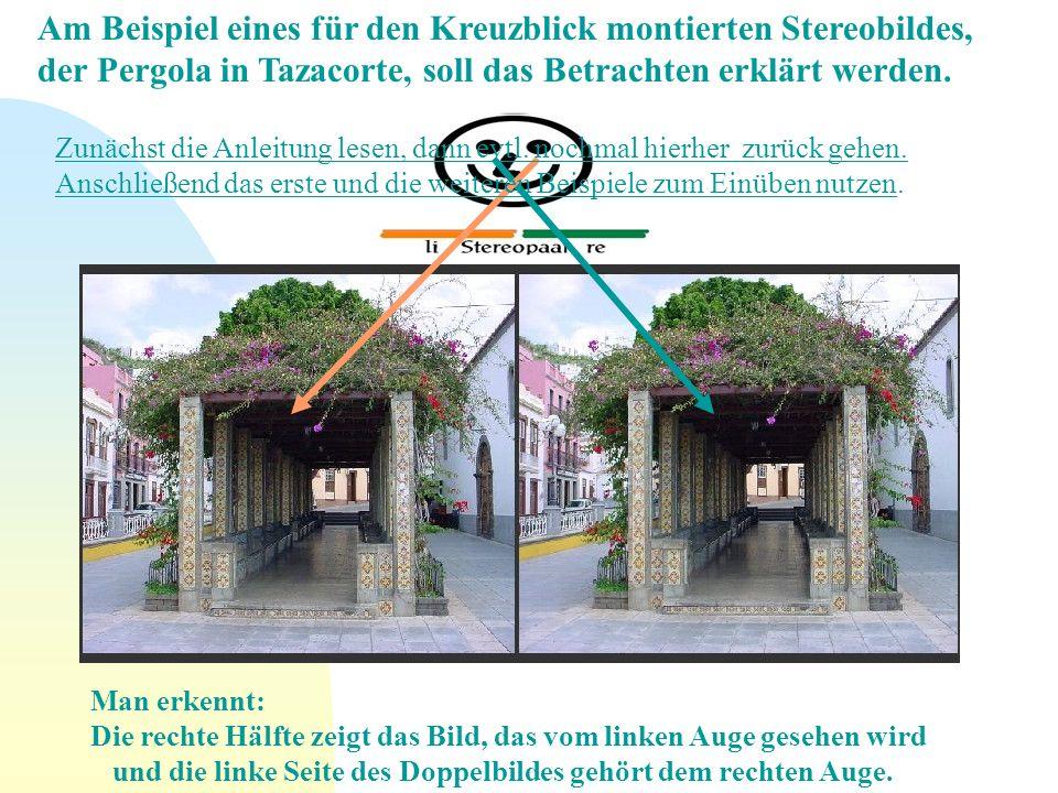Am Beispiel eines für den Kreuzblick montierten Stereobildes, der Pergola in Tazacorte, soll das Betrachten erklärt werden. Man erkennt: Die rechte Hä