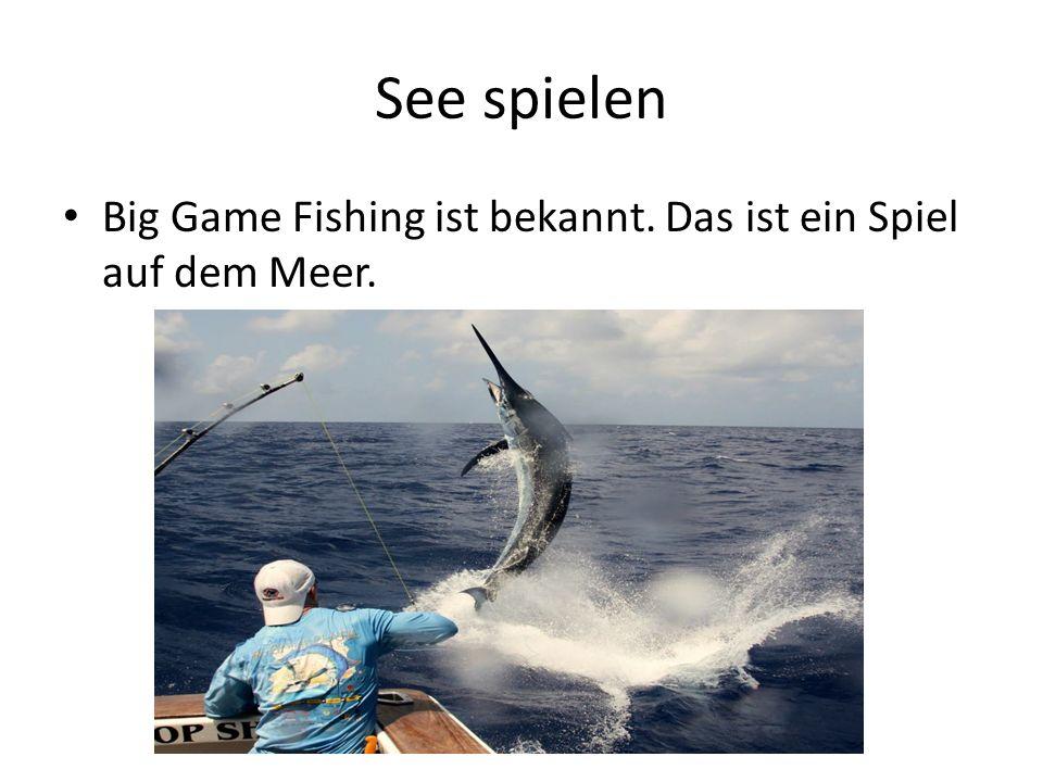 See spielen Big Game Fishing ist bekannt. Das ist ein Spiel auf dem Meer.