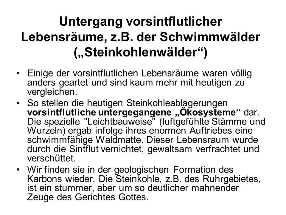 Untergang vorsintflutlicher Lebensräume, z.B.