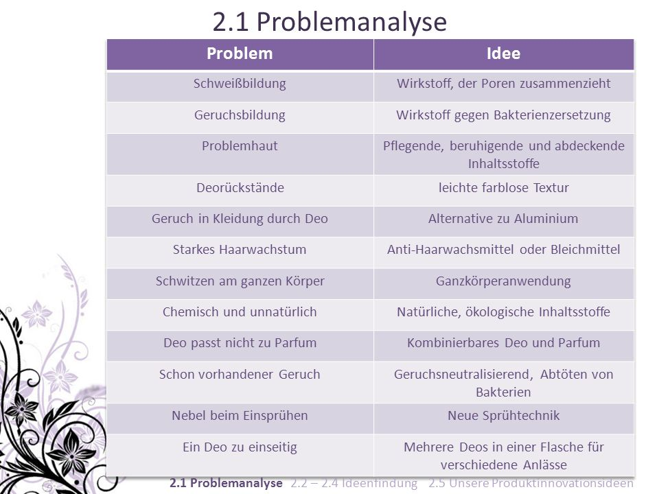 2.1 Problemanalyse 2.1 Problemanalyse 2.2 – 2.4 Ideenfindung 2.5 Unsere Produktinnovationsideen