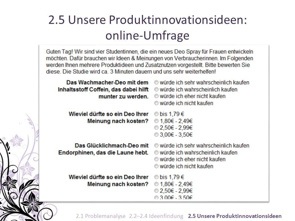 2.5 Unsere Produktinnovationsideen: online-Umfrage 2.1 Problemanalyse 2.2–2.4 Ideenfindung 2.5 Unsere Produktinnovationsideen