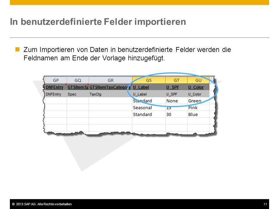 ©2013 SAP AG. Alle Rechte vorbehalten.11 In benutzerdefinierte Felder importieren Zum Importieren von Daten in benutzerdefinierte Felder werden die Fe