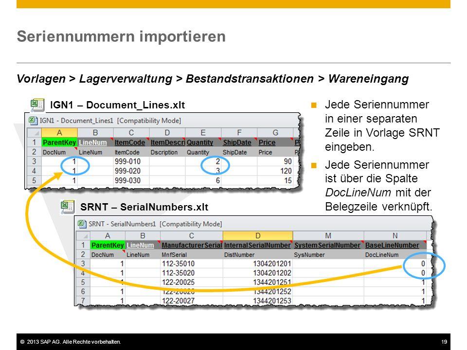 ©2013 SAP AG. Alle Rechte vorbehalten.19 Seriennummern importieren Jede Seriennummer in einer separaten Zeile in Vorlage SRNT eingeben. Jede Seriennum