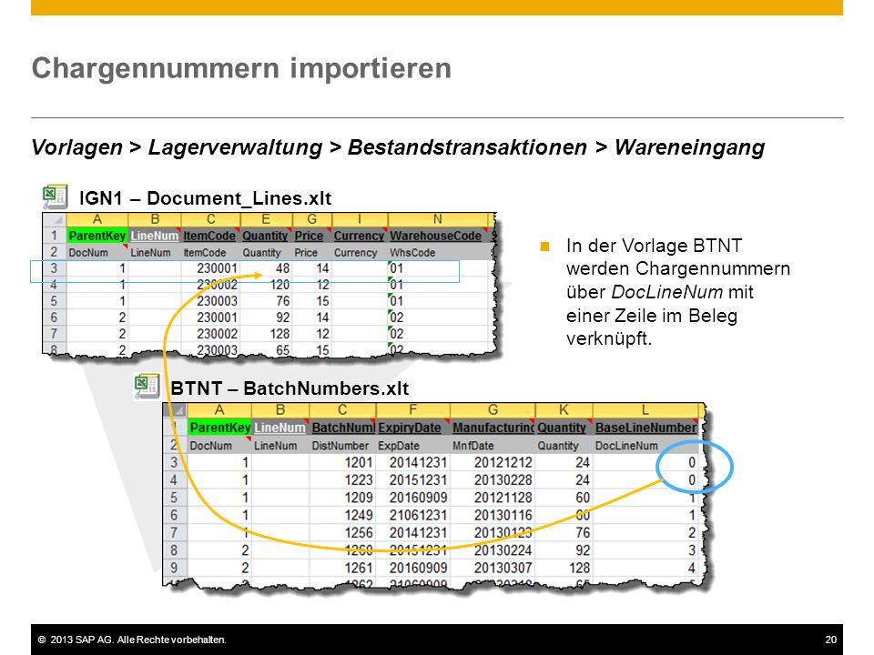 ©2013 SAP AG. Alle Rechte vorbehalten.20 Chargennummern importieren In der Vorlage BTNT werden Chargennummern über DocLineNum mit einer Zeile im Beleg