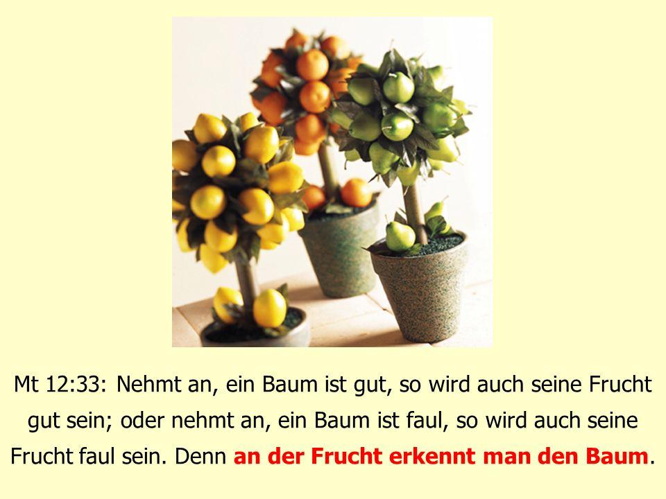 Mt 12:33: Nehmt an, ein Baum ist gut, so wird auch seine Frucht gut sein; oder nehmt an, ein Baum ist faul, so wird auch seine Frucht faul sein. Denn