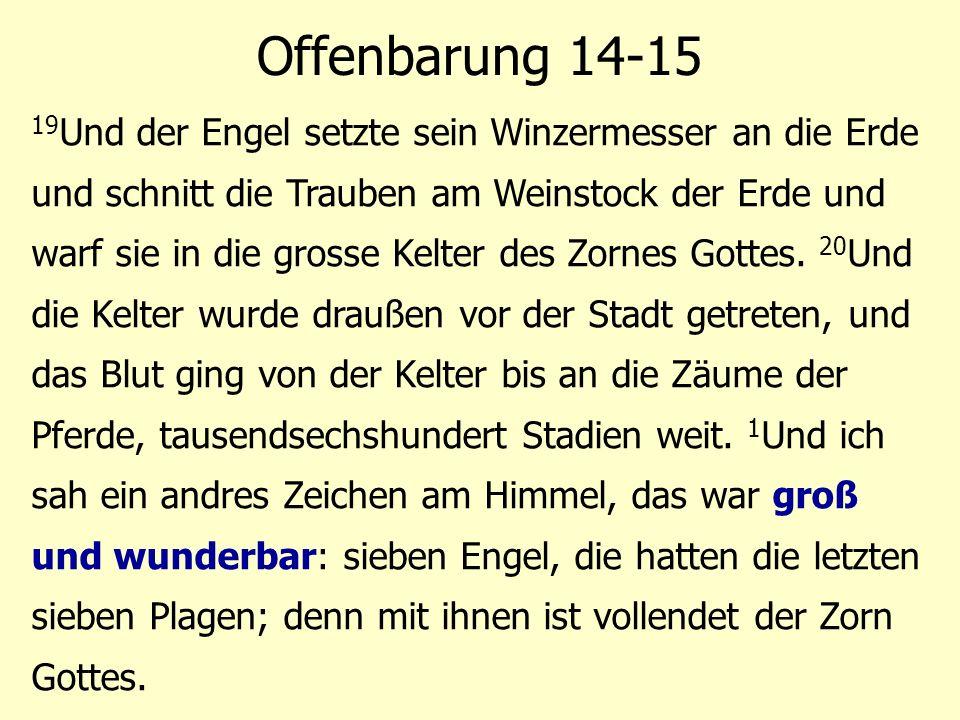 19 Und der Engel setzte sein Winzermesser an die Erde und schnitt die Trauben am Weinstock der Erde und warf sie in die grosse Kelter des Zornes Gotte