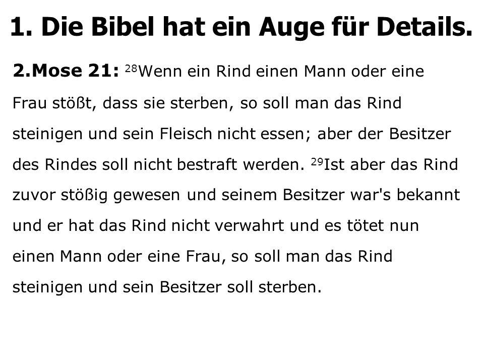 2.Mose 21: 28 Wenn ein Rind einen Mann oder eine Frau stößt, dass sie sterben, so soll man das Rind steinigen und sein Fleisch nicht essen; aber der B
