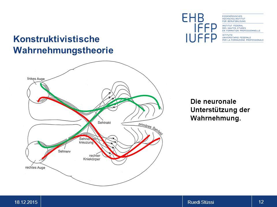 18.12.2015Ruedi Stüssi 12 Konstruktivistische Wahrnehmungstheorie Die neuronale Unterstützung der Wahrnehmung.