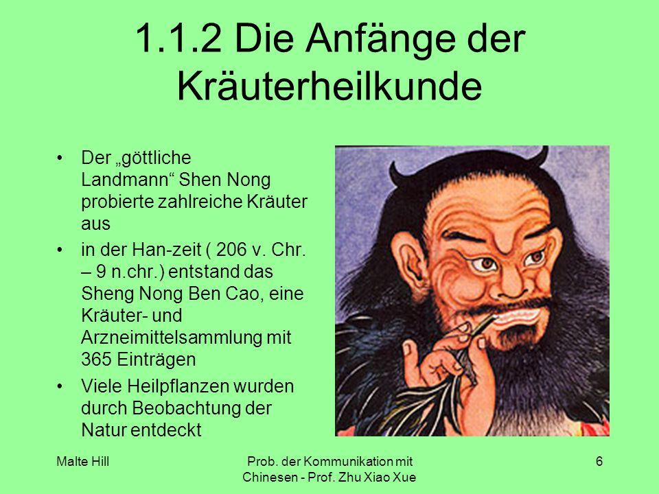 Malte HillProb.der Kommunikation mit Chinesen - Prof.