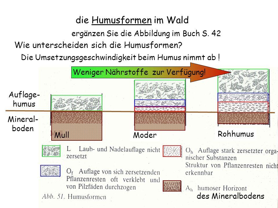 Moder die Humusformen im Wald ergänzen Sie die Abbildung im Buch S. 42 Auflage- humus Mineral- boden des Mineralbodens Mull Rohhumus Wie unterscheiden