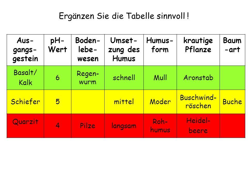 Aus- gangs- gestein pH- Wert Boden- lebe- wesen Umset- zung des Humus Humus- form krautige Pflanze Baum -art Basalt/ Kalk 6 Regen- wurm schnellMullAro
