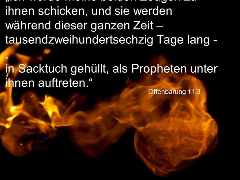 """Offenbarung 11,3 """"Ich werde meine beiden Zeugen zu ihnen schicken, und sie werden während dieser ganzen Zeit – tausendzweihundertsechzig Tage lang -, in Sacktuch gehüllt, als Propheten unter ihnen auftreten."""
