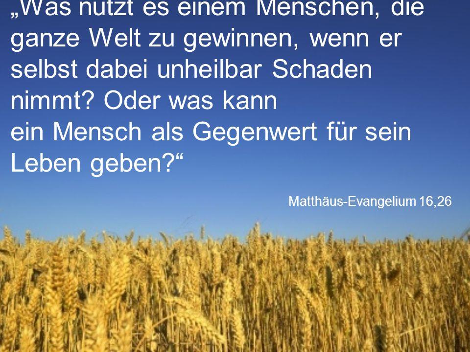 """Matthäus-Evangelium 16,26 """"Was nützt es einem Menschen, die ganze Welt zu gewinnen, wenn er selbst dabei unheilbar Schaden nimmt."""