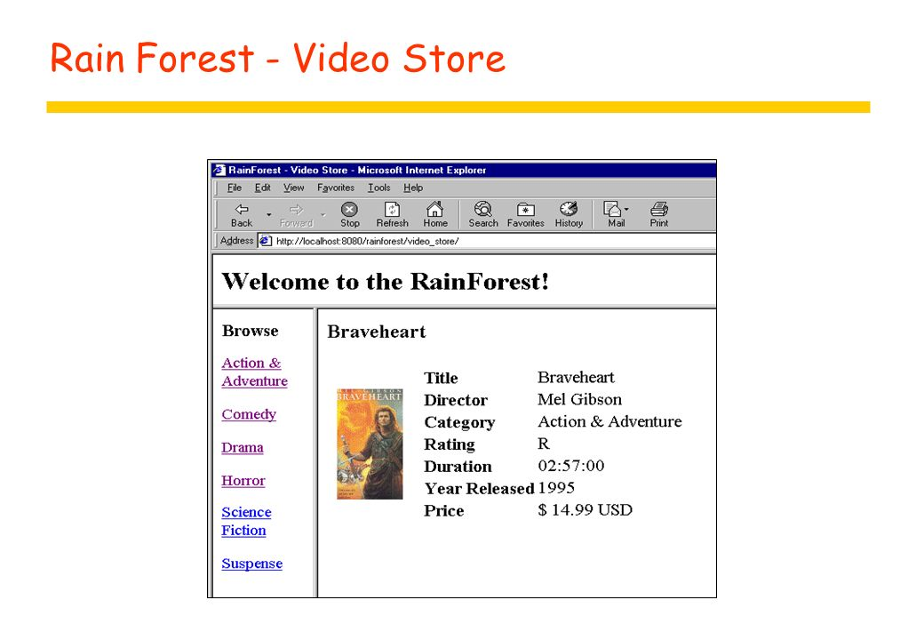 Rain Forest - Video Store