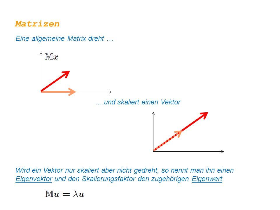 Matrizen Eine allgemeine Matrix dreht … … und skaliert einen Vektor Wird ein Vektor nur skaliert aber nicht gedreht, so nennt man ihn einen Eigenvekto
