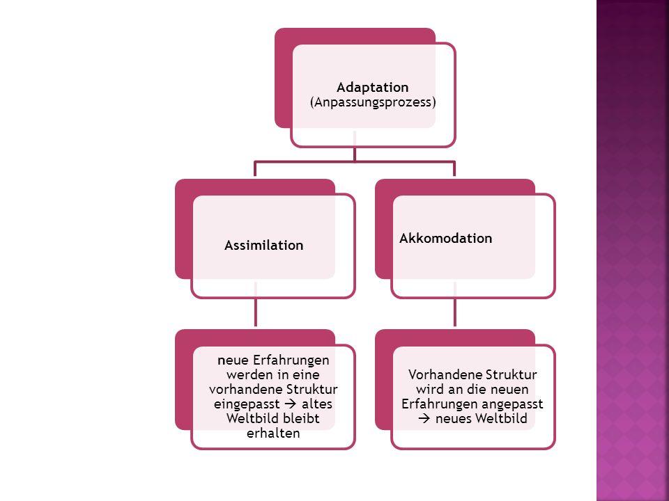 Adaptation (Anpassungsprozess) Assimilation neue Erfahrungen werden in eine vorhandene Struktur eingepasst  altes Weltbild bleibt erhalten Akkomodati