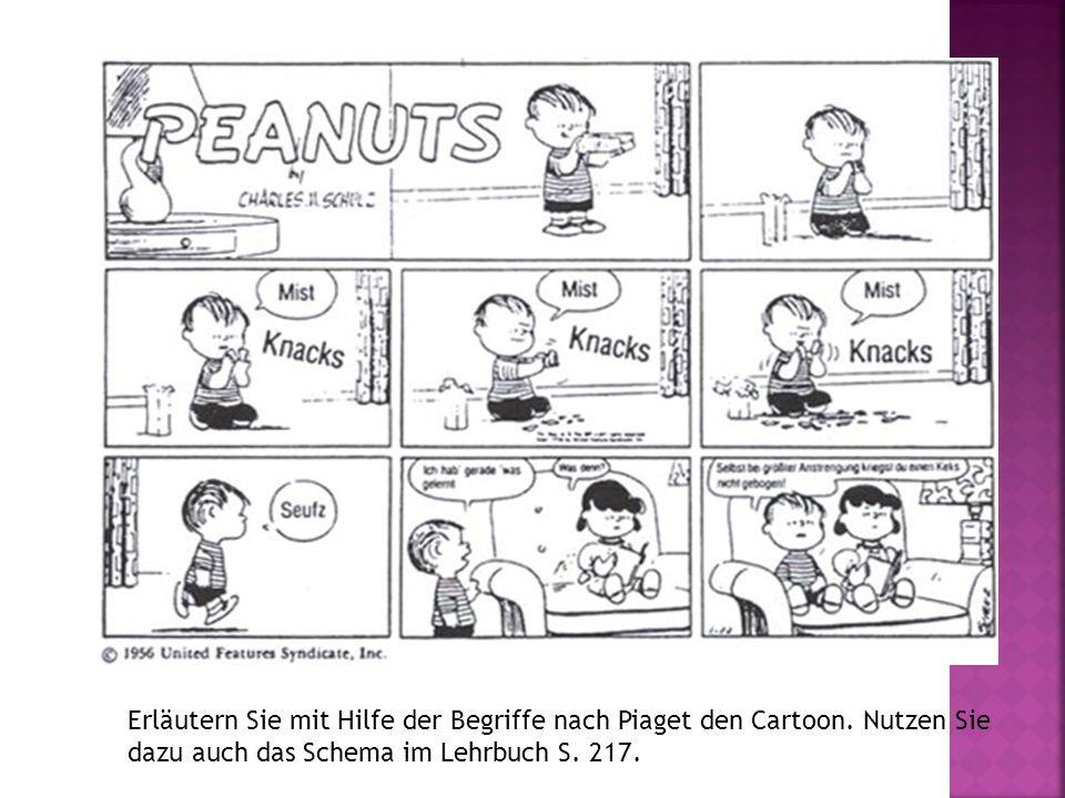 Erläutern Sie mit Hilfe der Begriffe nach Piaget den Cartoon. Nutzen Sie dazu auch das Schema im Lehrbuch S. 217.