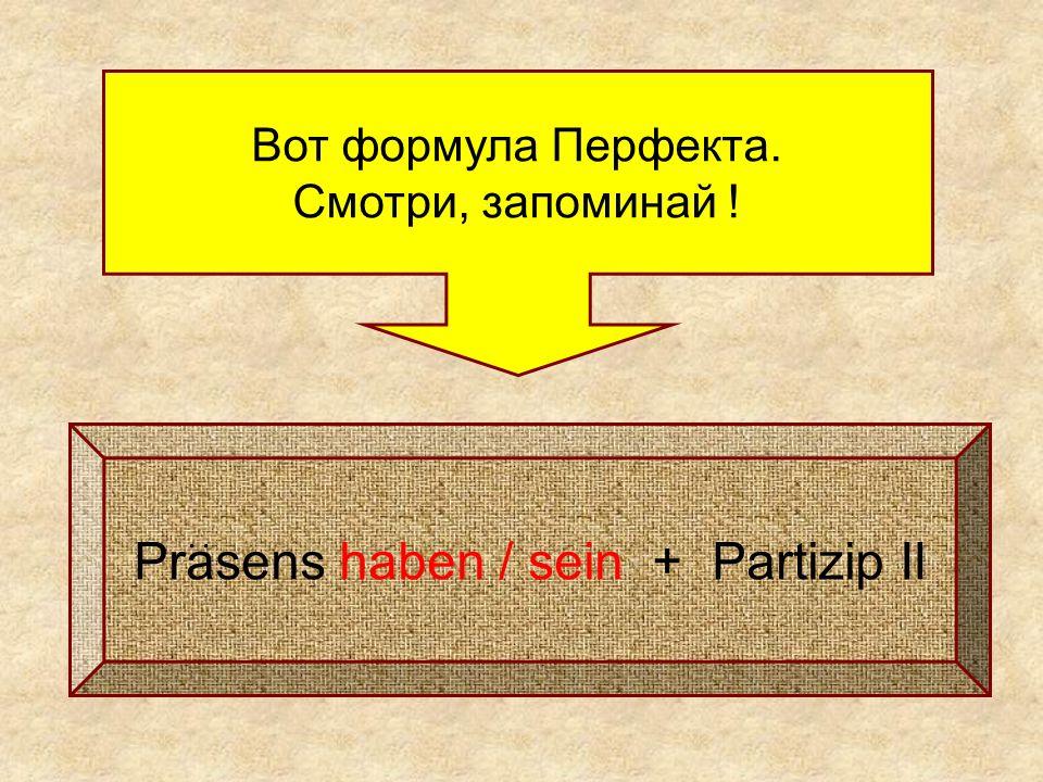 Вот формула Перфекта. Смотри, запоминай ! Prasens haben / sein + Partizip II