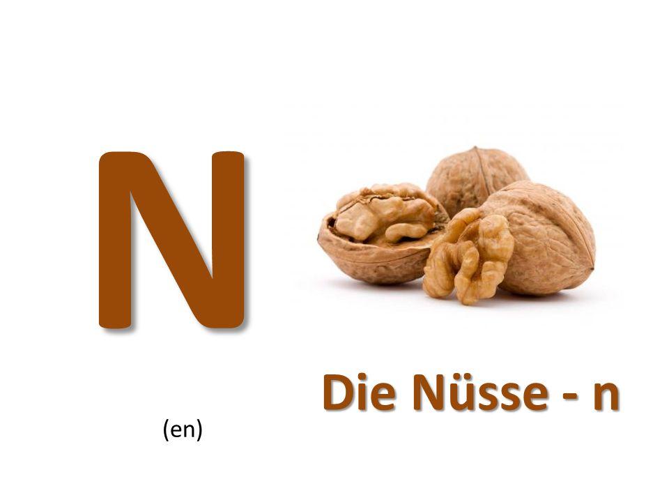 N (en) Die Nüsse - n