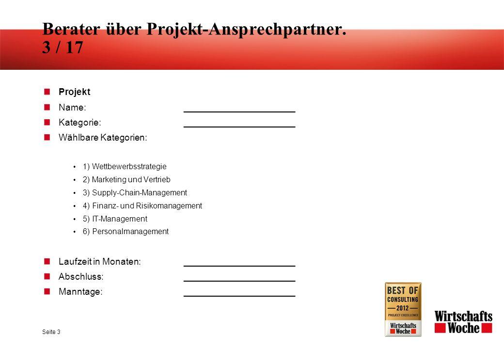 Berater über Projekt-Ansprechpartner.