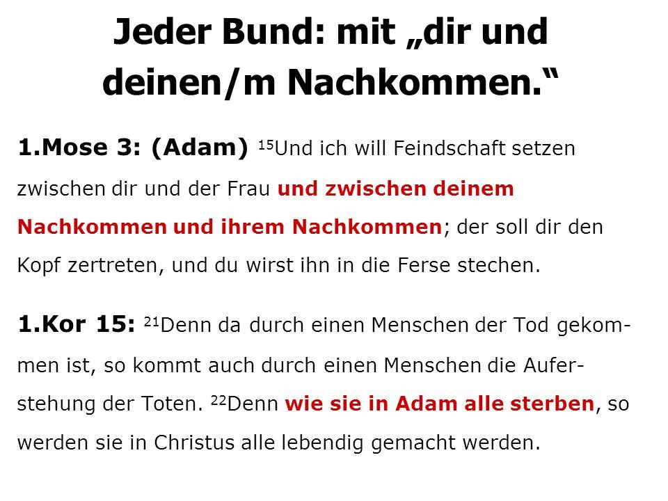 1.Mose 3: (Adam) 15 Und ich will Feindschaft setzen zwischen dir und der Frau und zwischen deinem Nachkommen und ihrem Nachkommen; der soll dir den Ko