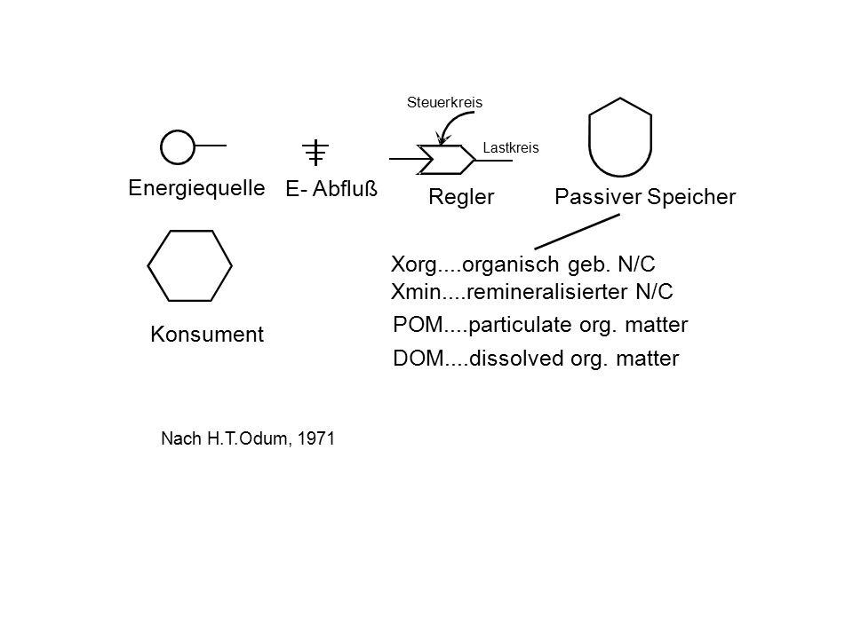 E- Abfluß Energiequelle ReglerPassiver Speicher Konsument Steuerkreis Lastkreis Xorg....organisch geb. N/C Xmin....remineralisierter N/C Nach H.T.Odum