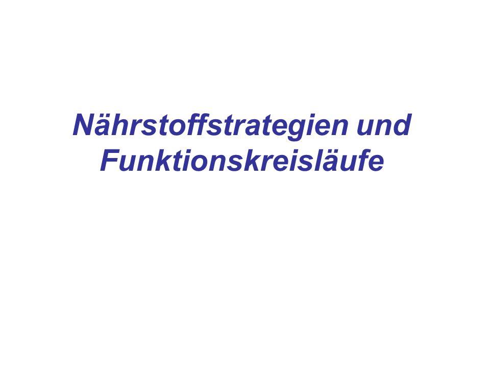 Nährstoffstrategien und Funktionskreisläufe