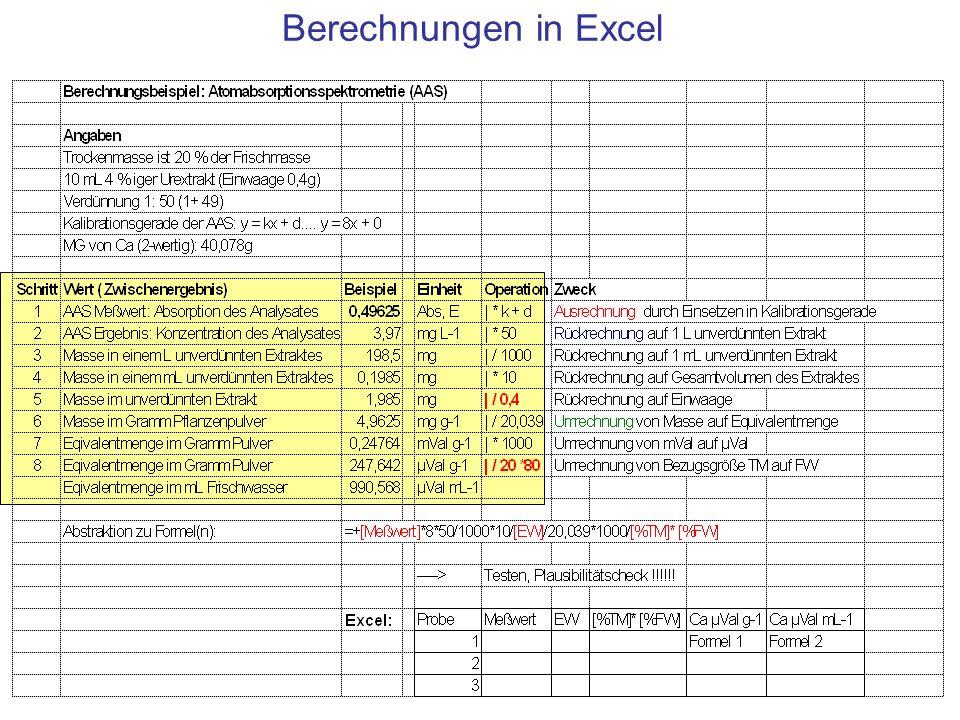 Berechnungen in Excel