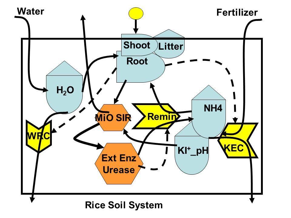 Remin Root Shoot MiO SIR Ext Enz Urease KI + _pH H2OH2O NH4 Fertilizer Water Rice Soil System WRC KEC Litter