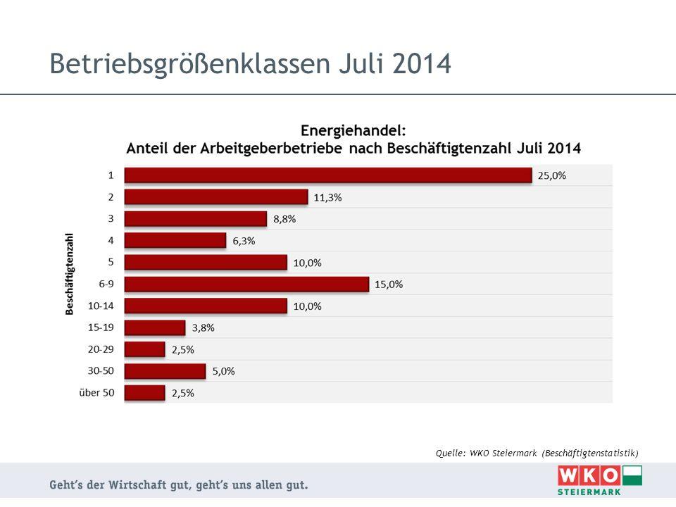 Betriebsgrößenklassen Juli 2014 Quelle: WKO Steiermark (Beschäftigtenstatistik)