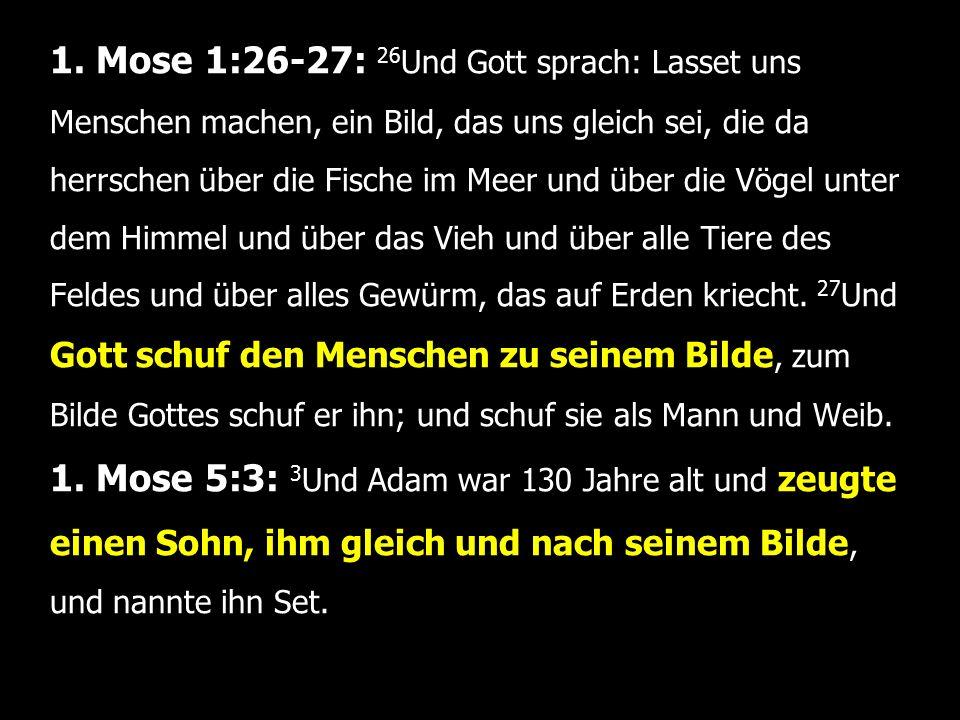 1. Mose 1:26-27: 26 Und Gott sprach: Lasset uns Menschen machen, ein Bild, das uns gleich sei, die da herrschen über die Fische im Meer und über die V