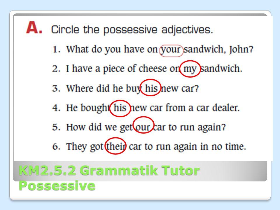 KM2.5.2 Grammatik Tutor Possessive