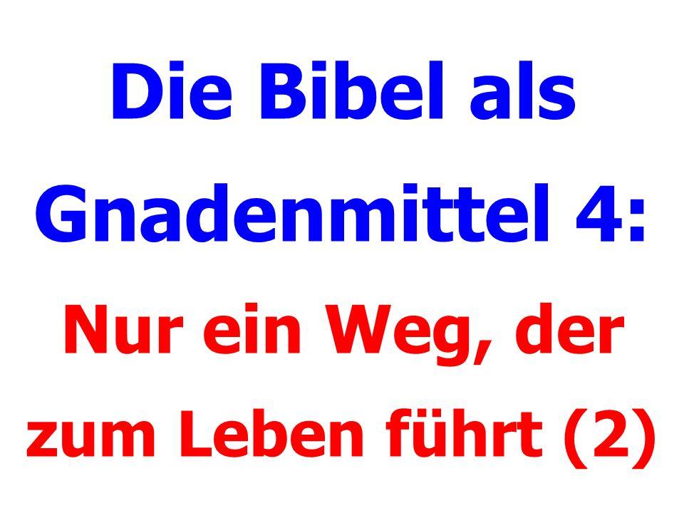 Die Bibel als Gnadenmittel 4: Nur ein Weg, der zum Leben führt (2)