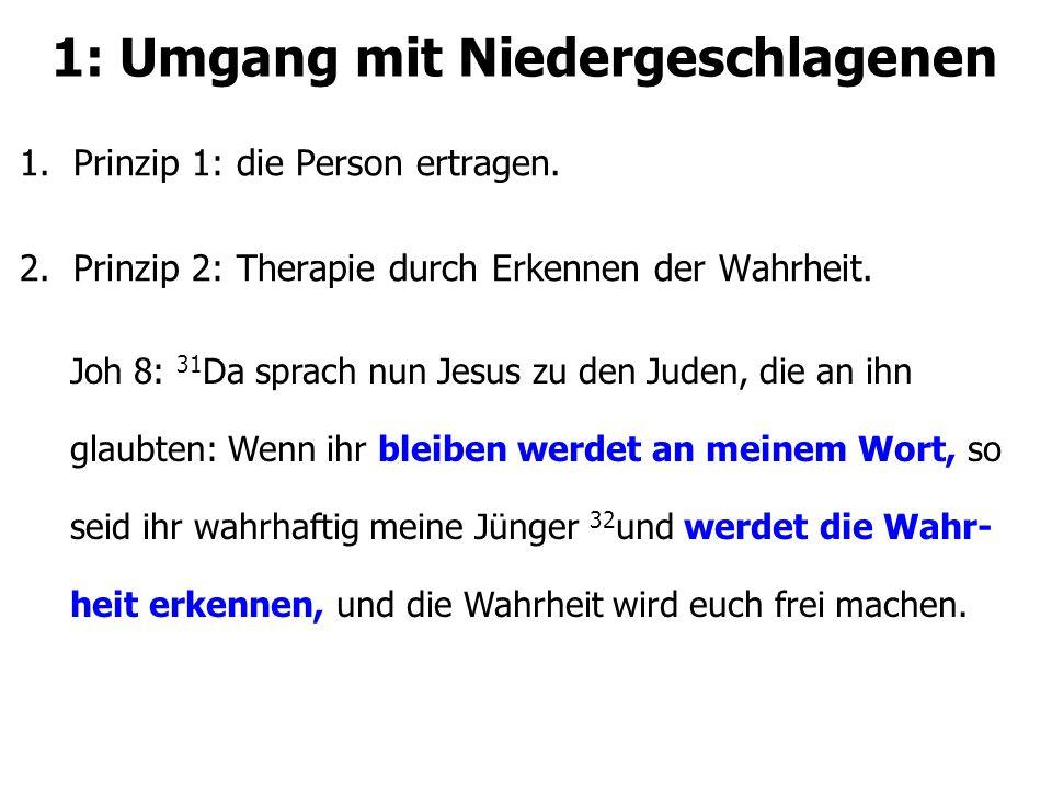 1: Umgang mit Niedergeschlagenen 1.Prinzip 1: die Person ertragen. 2.Prinzip 2: Therapie durch Erkennen der Wahrheit. Joh 8: 31 Da sprach nun Jesus zu
