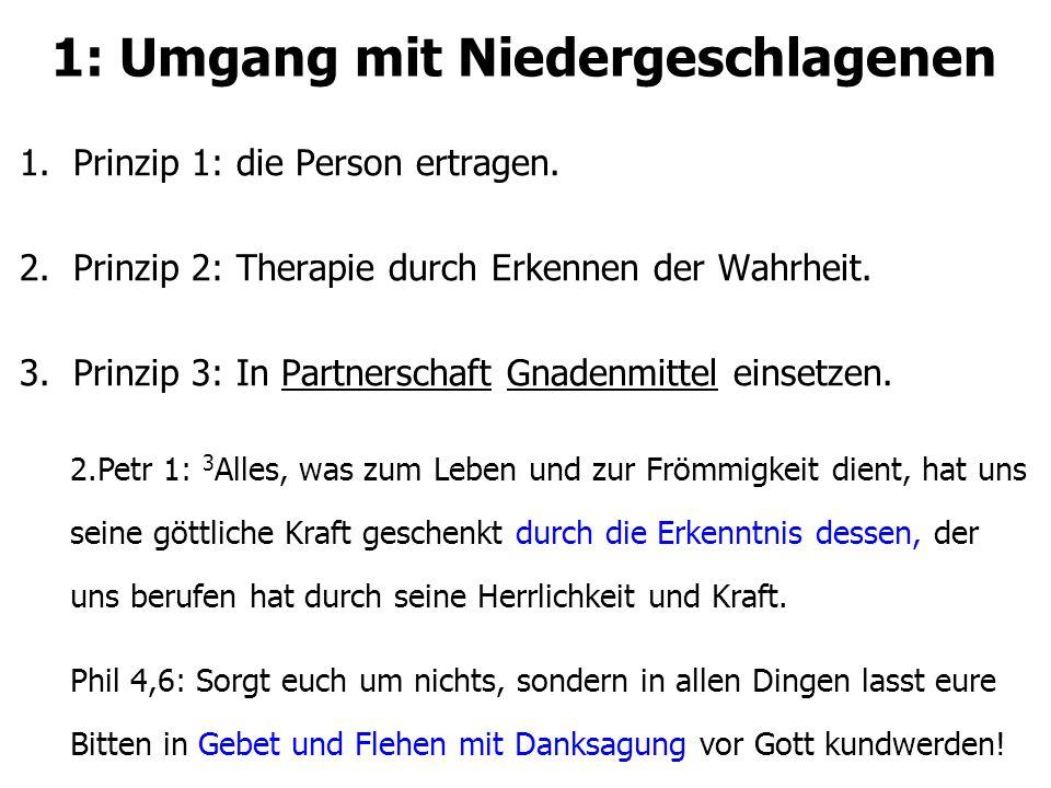 1: Umgang mit Niedergeschlagenen 1.Prinzip 1: die Person ertragen. 2.Prinzip 2: Therapie durch Erkennen der Wahrheit. 3.Prinzip 3: In Partnerschaft Gn
