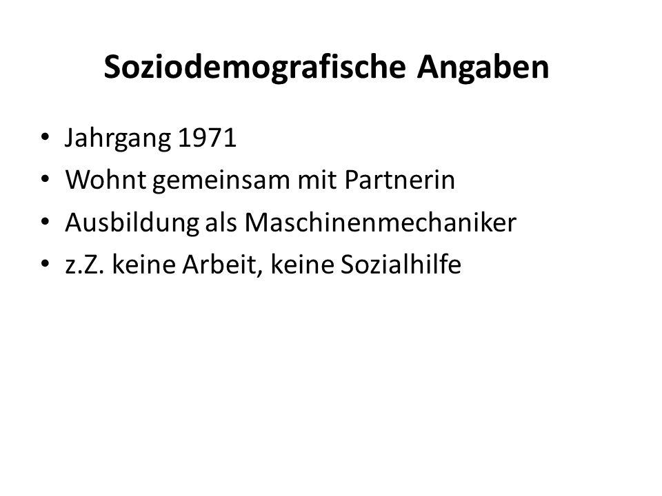 Soziodemografische Angaben Jahrgang 1971 Wohnt gemeinsam mit Partnerin Ausbildung als Maschinenmechaniker z.Z.
