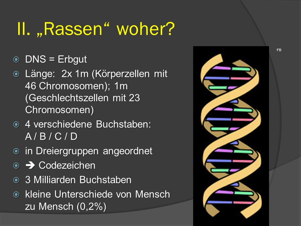 FB  DNS = Erbgut  Länge: 2x 1m (Körperzellen mit 46 Chromosomen); 1m (Geschlechtszellen mit 23 Chromosomen)  4 verschiedene Buchstaben: A / B / C /