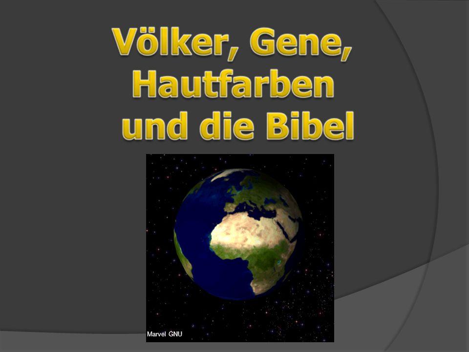 Literatur  C.Wieland: One Human Family,  A. vom Stein: Was nun, Mr.