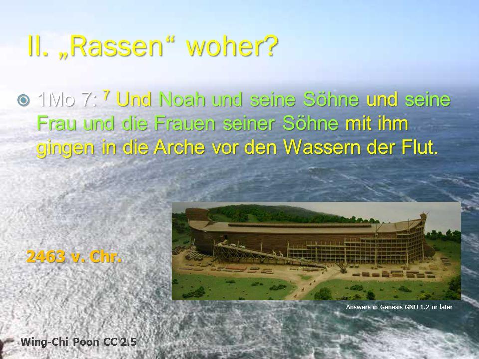 """Wing-Chi Poon CC 2.5 II. """"Rassen"""" woher?  1Mo 7: 7 Und Noah und seine Söhne und seine Frau und die Frauen seiner Söhne mit ihm gingen in die Arche vo"""