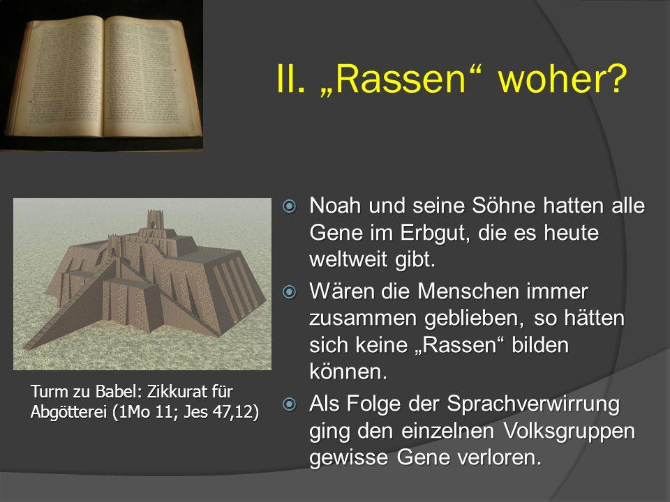 """ Noah und seine Söhne hatten alle Gene im Erbgut, die es heute weltweit gibt.  Wären die Menschen immer zusammen geblieben, so hätten sich keine """"Ra"""