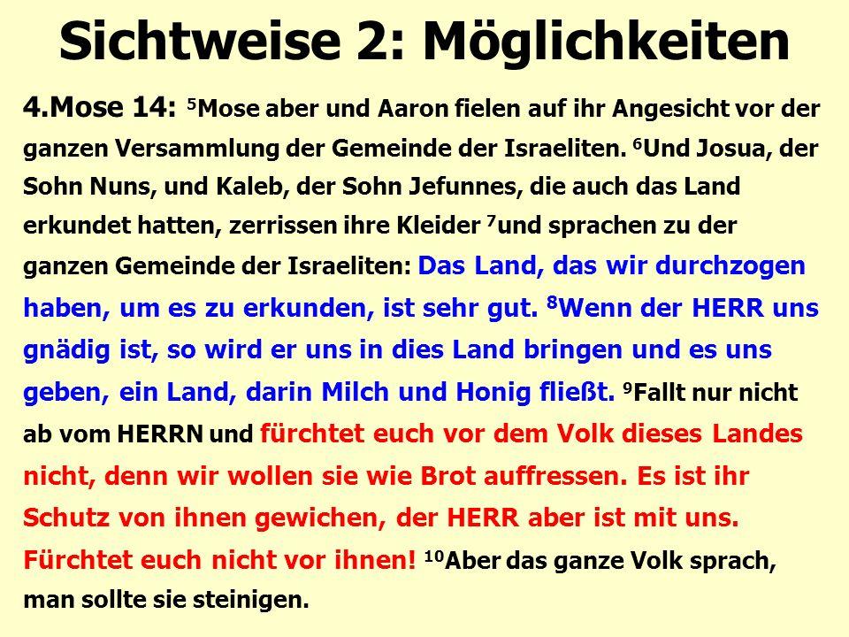 Sichtweise 2: Möglichkeiten 4.Mose 14: 5 Mose aber und Aaron fielen auf ihr Angesicht vor der ganzen Versammlung der Gemeinde der Israeliten. 6 Und Jo