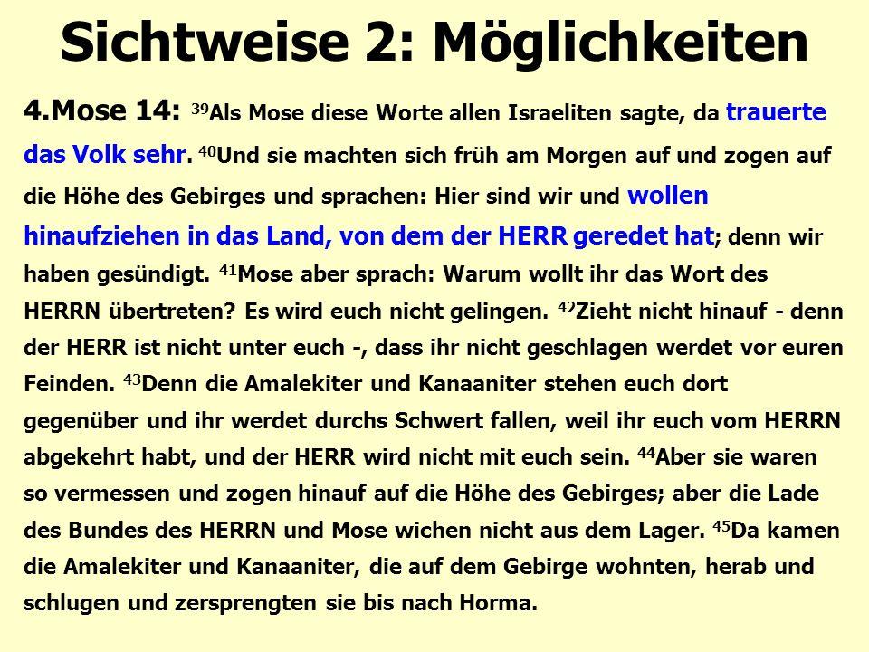 Sichtweise 2: Möglichkeiten 4.Mose 14: 39 Als Mose diese Worte allen Israeliten sagte, da trauerte das Volk sehr. 40 Und sie machten sich früh am Morg