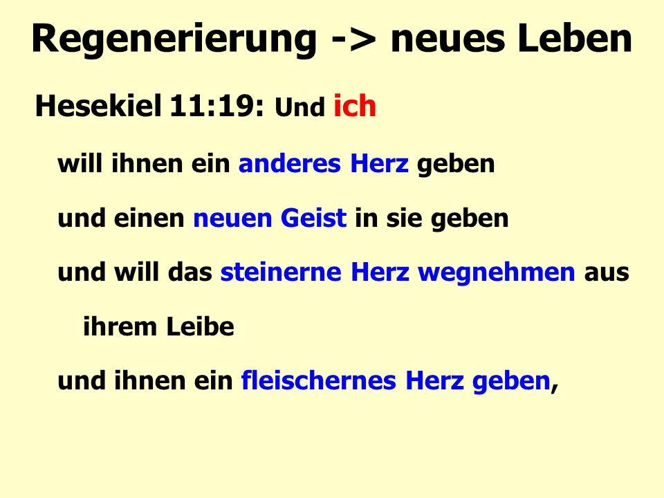 Regenerierung -> neues Leben Hesekiel 11:19: Und ich will ihnen ein anderes Herz geben und einen neuen Geist in sie geben und will das steinerne Herz
