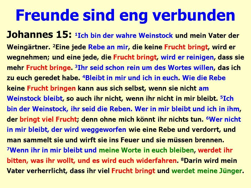 Freunde sind eng verbunden Johannes 15: 1 Ich bin der wahre Weinstock und mein Vater der Weingärtner. 2 Eine jede Rebe an mir, die keine Frucht bringt