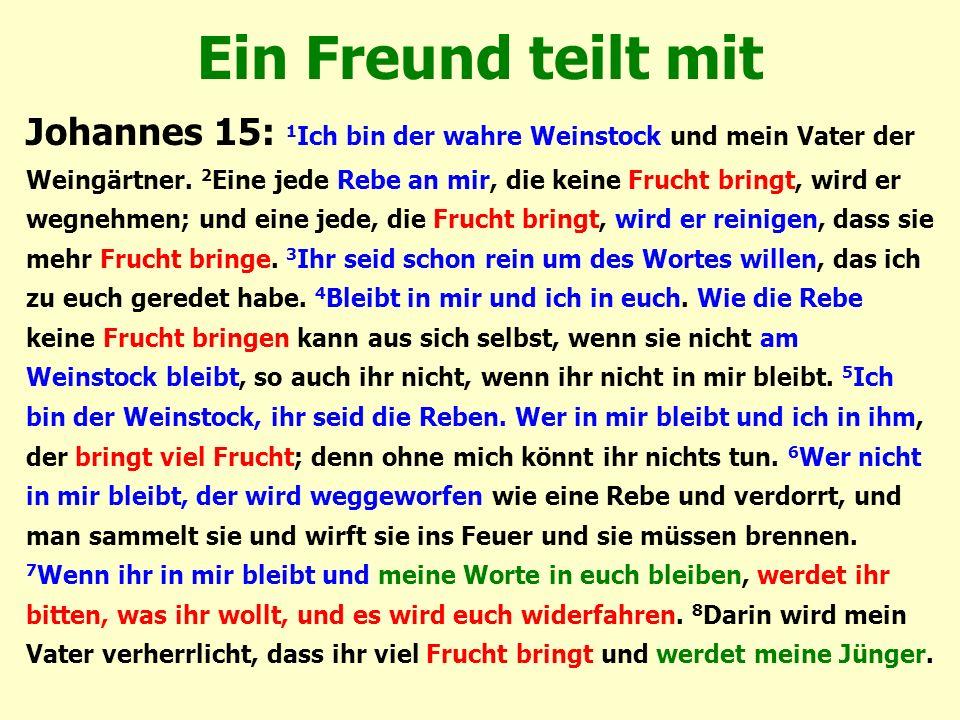 Ein Freund teilt mit Johannes 15: 1 Ich bin der wahre Weinstock und mein Vater der Weingärtner. 2 Eine jede Rebe an mir, die keine Frucht bringt, wird