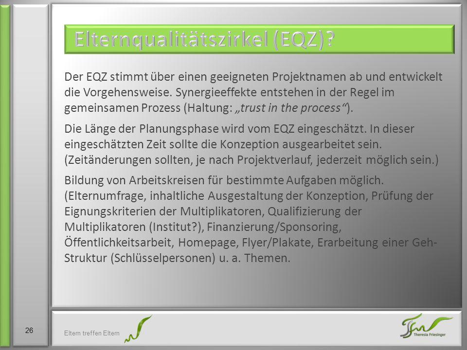 Der EQZ stimmt über einen geeigneten Projektnamen ab und entwickelt die Vorgehensweise. Synergieeffekte entstehen in der Regel im gemeinsamen Prozess