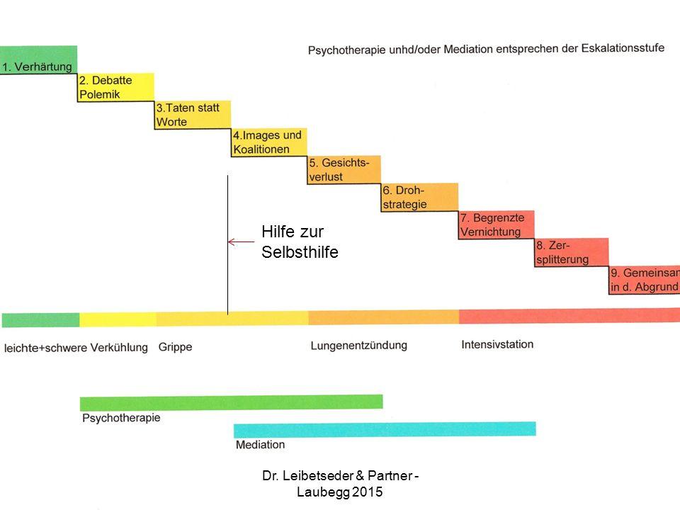 Hilfe zur Selbsthilfe Dr. Leibetseder & Partner - Laubegg 2015